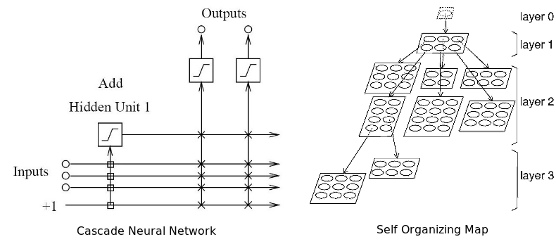 Adaptive architecture neural networks